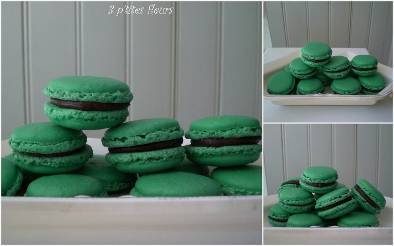 macarons couleur vert menthe photo de mes p 39 tites douceurs 3 p 39 tites fleurs. Black Bedroom Furniture Sets. Home Design Ideas
