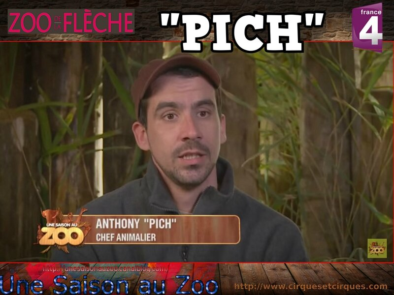 ANTHONY-PiCH