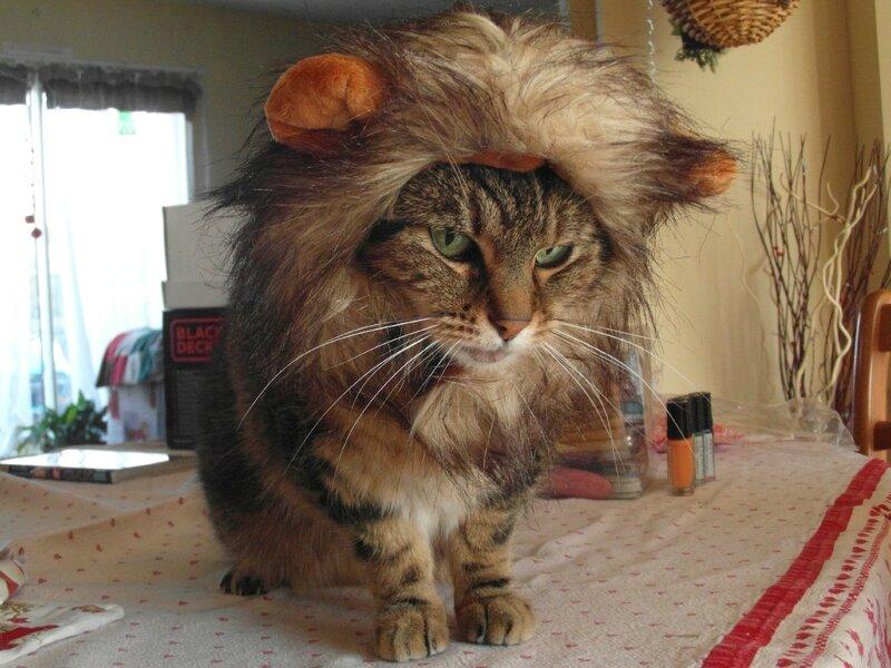 Messi lion2