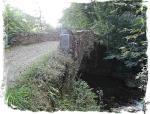 puente avant SALAS