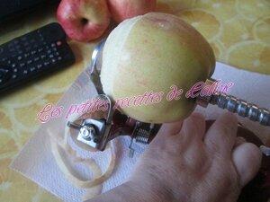 Gâteau moelleux pommes frangipane43
