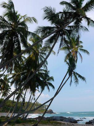Sri Lanka 4 plage