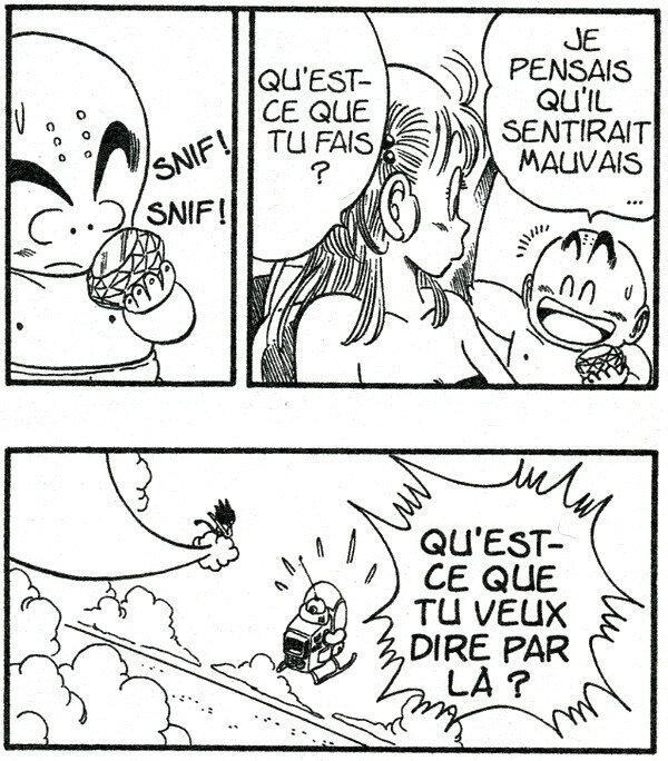 Canalblog Manga Dragonball Sexe Tome7 02