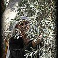 Lettre ouverte de shlomo sand - historien israëlien - a emmanuel macron