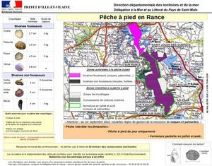 peche_rance_coquillages