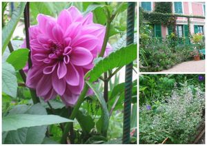 giverny blog 2