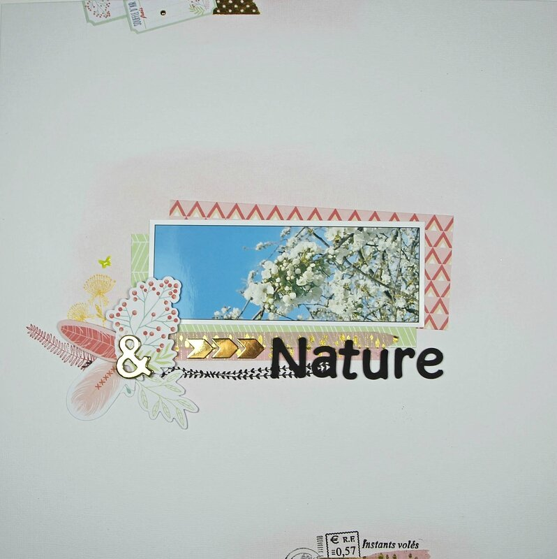Page Nature collection Plumes - DT Tacha 1p