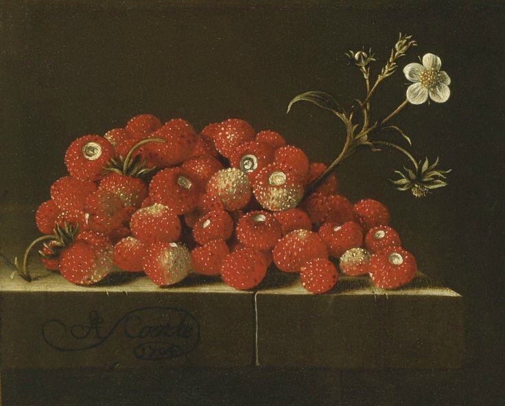 Adriaen Coorte (Middelburg () 1660 () - after 1707), Wild strawberries on a ledge