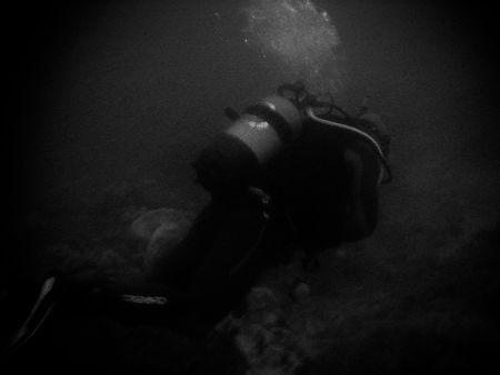 Plongée dans une purée de pois