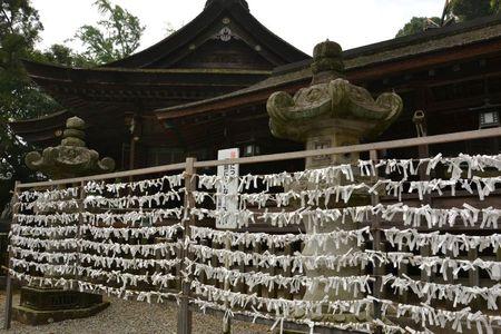 1 et 2 juillet Takamatsu Kotohira 261