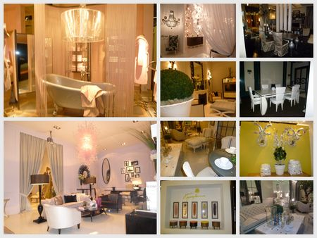 blog_salon_janv_2011