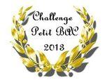 Challenge_Enna_2013