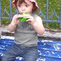 Au jardin public ... 14/07/08