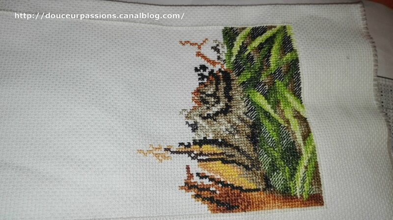 broderie ang mars