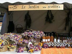 fleurs_de_Marie_de_Crozant