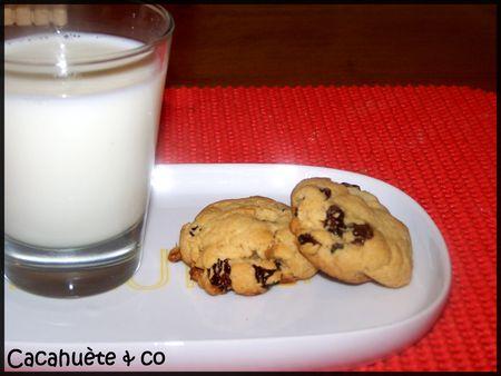 cookie_noix_raisins