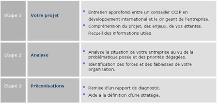 Le diagnostic export de la chambre de commerce et d for Chambre de commerce et d industrie de paris ccip