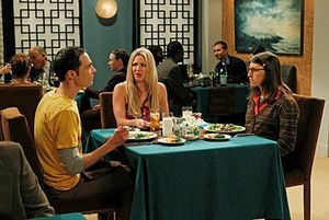 big_bang_theory_robotic_manipulation_season4_03