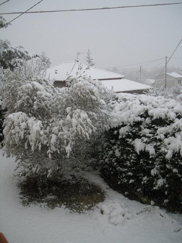 neige à gréasque 203