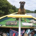 Le Chef du boat....