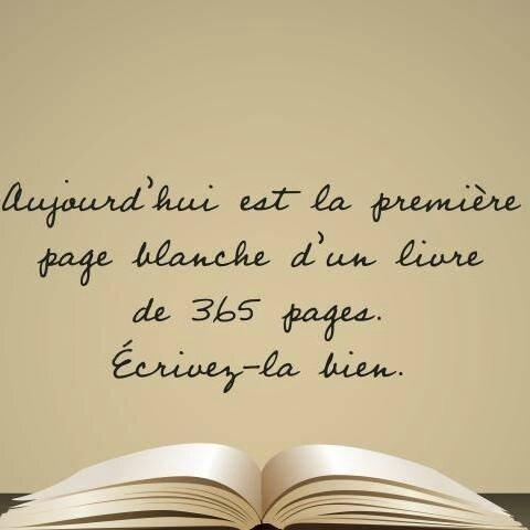 Bonne année livre