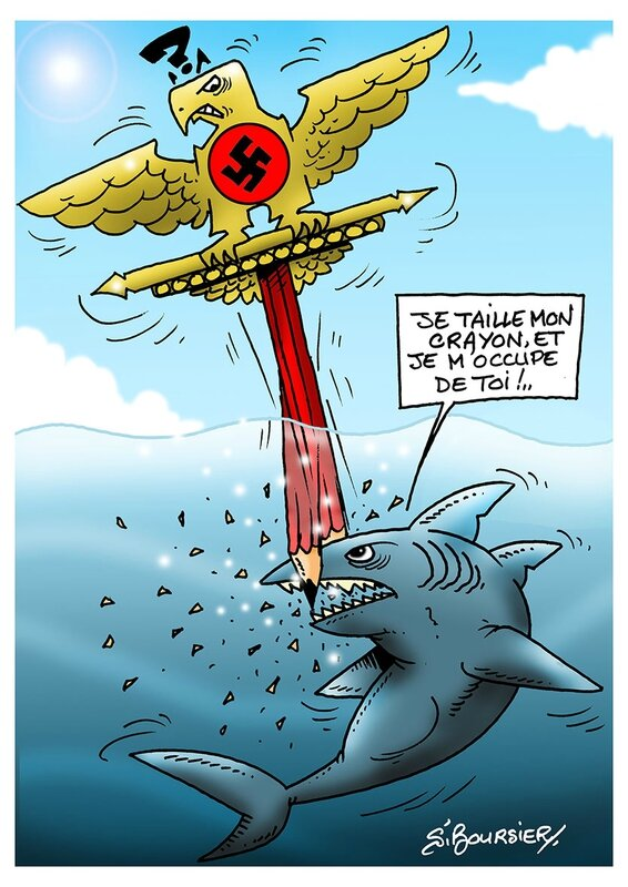 requin anti SS web