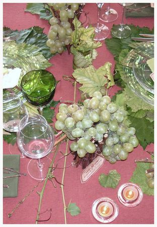 2009_10_04_graines_de_vendanges38