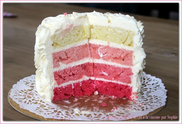Pink Ombre Cake 002