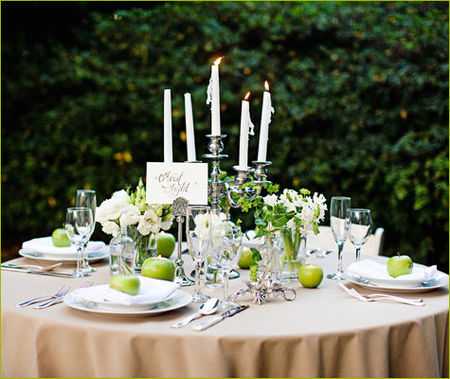 twilight_wedding_15