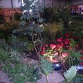 Floralies 014