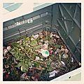 Mon compost ne fait pas cot-cot mais il recycle !