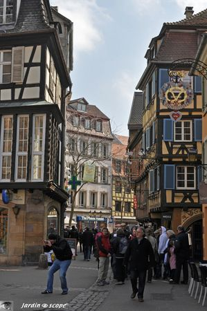 Groupe-de-touristes-dans-Colmar