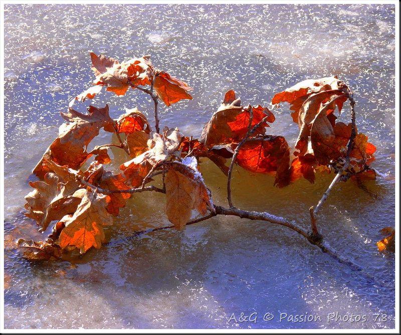 Un hiver qui n'en finit pas
