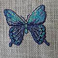 Papillon aux 6 bleu-2