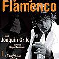 Stage flamenco, avec joaquín grilo à st jean de luz du 17 au 20 mai 2012