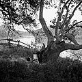Hotties reading - ford 2