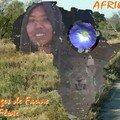 Afrique : Faune et Flore