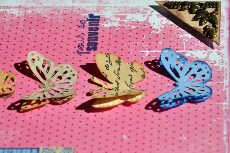 5-Relief papillons