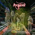 La meute en Avalon 1