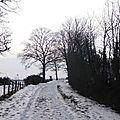 Ballade hivernale 2