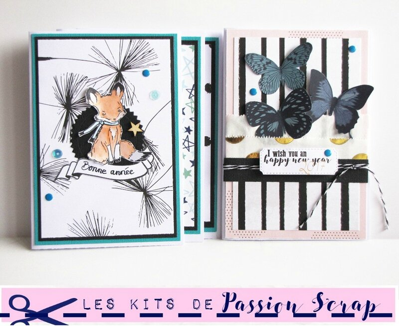 Jasmina - Kit janvier 2017 Passion scrap (5)