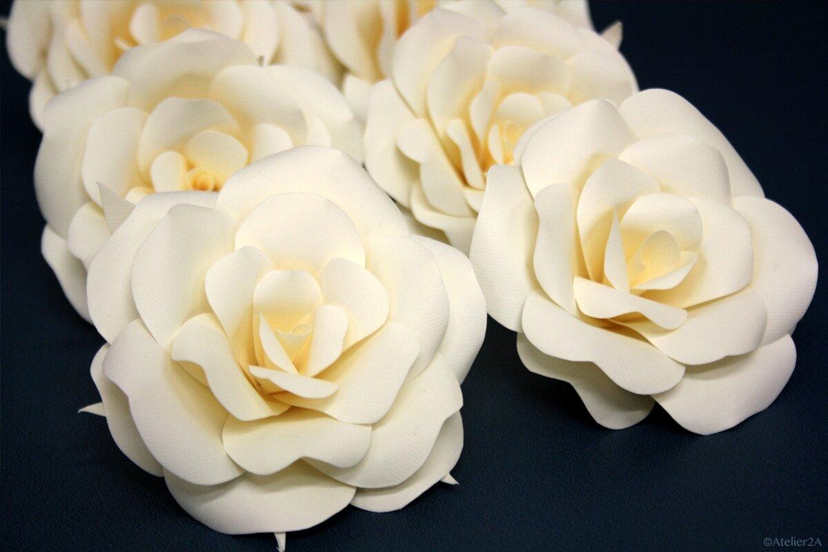 Fleur Geante En Papier Tous Les Messages Sur Fleur Geante En