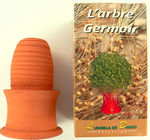 arbre_germoir