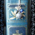 Petit MP gris et bleu (2)