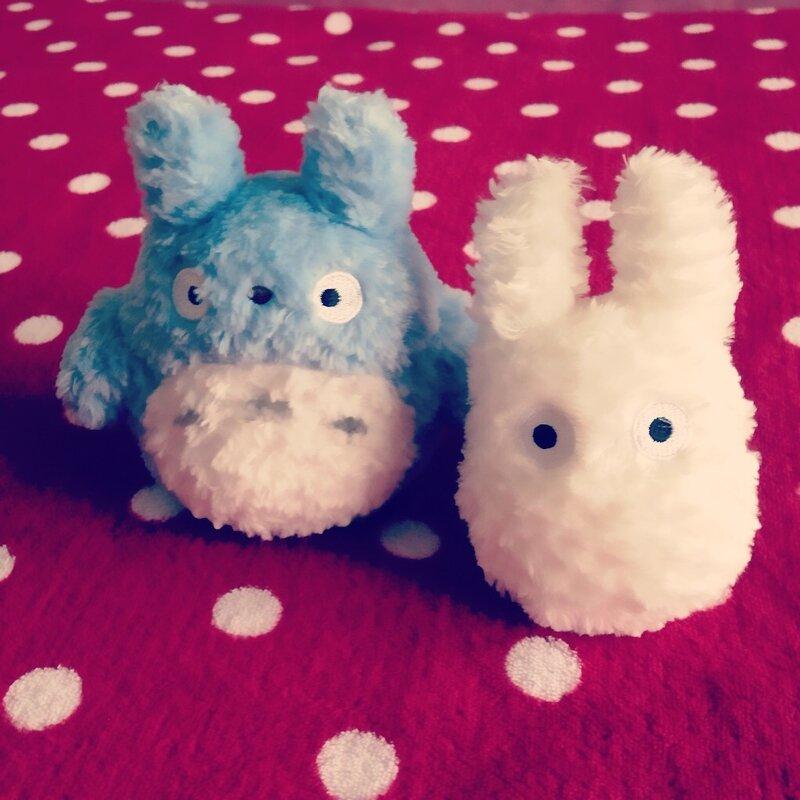 Team Totoro
