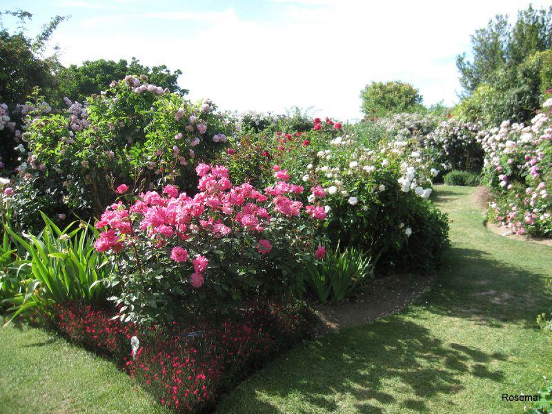 Jardin de morailles 4 photo de le jardin de roses for Jardins a visiter