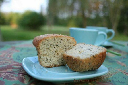 lime_poppy_seeds_coupe
