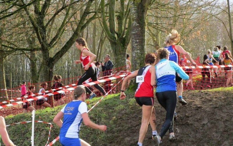 Demi finale chts france cross 5 fevrier 2017 Coulommiers 010