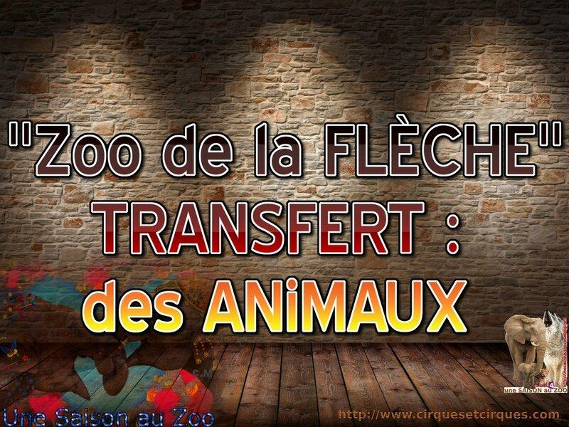- TRANSFERT des ANiAMUX