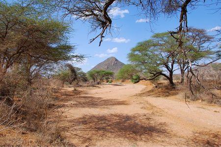 Kenya__593_